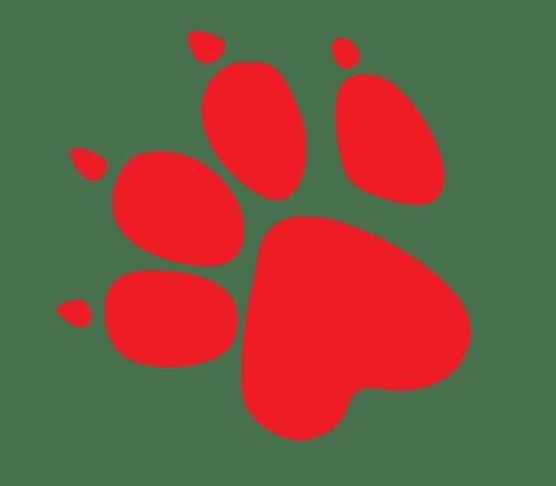 naughty_dog_logo