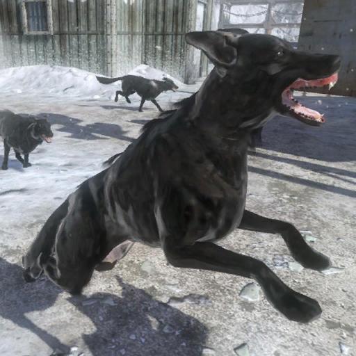 Attack_Dogs_BO