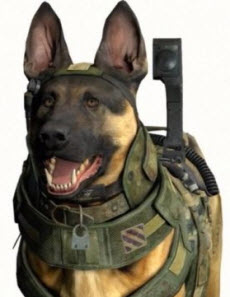 call-of-duty-dog